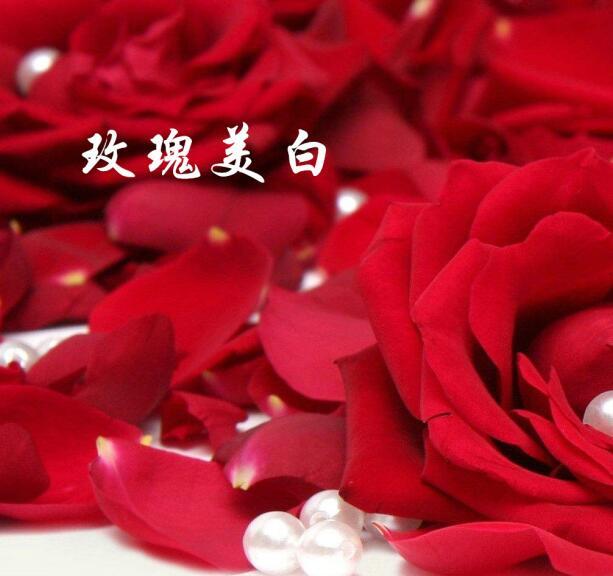 玫瑰美白.jpg
